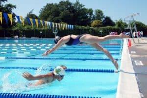 sr_dolphin_jump